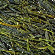 15-yamegreen-leaves